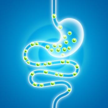 blähungen bei magen darm infekt