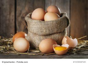 Cholesterin im Ei