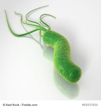Helicobacter Pylori Bakterium