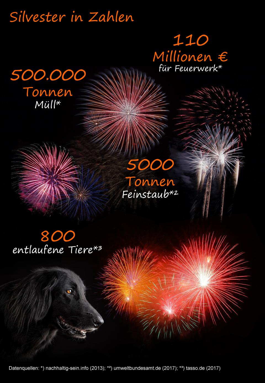 Infografik zu Silvester