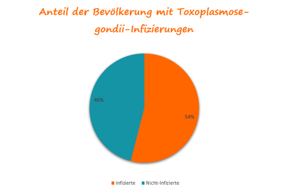 Toxoplasmose in der deutschen Bevölkerung