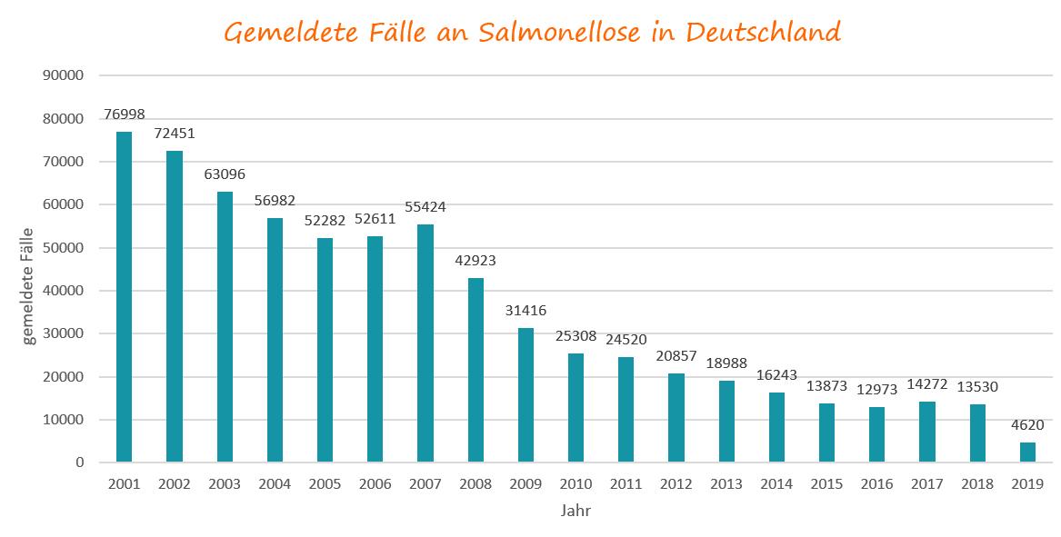 Salmonelleninfektion