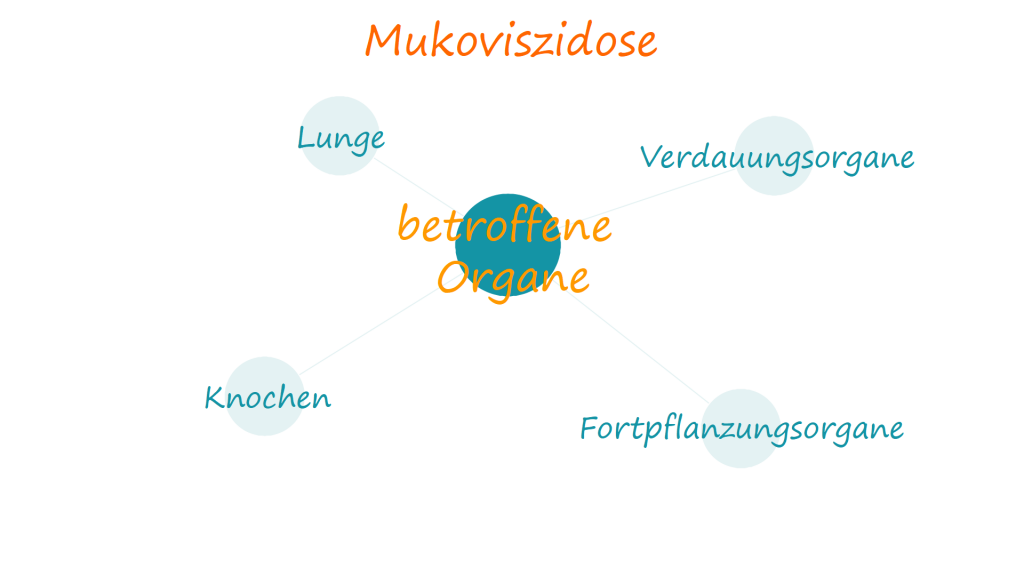 Betroffene Organe bei Mukoviszidose