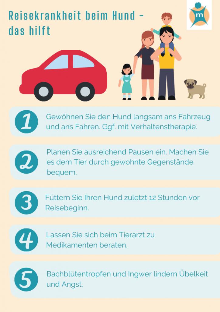 Reisekrankheit bei Hunden überwinden