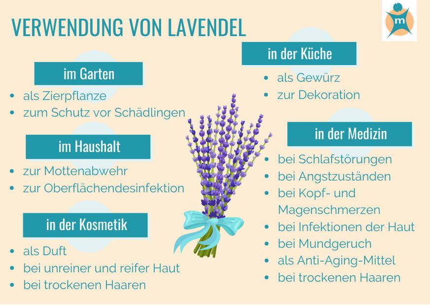 Verwendung von Lavendel