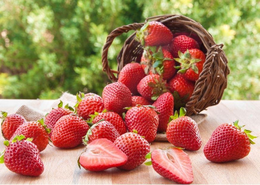 Garten-Erdbeeren