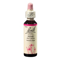BACHBL�TEN Pine Tropfen - 20ml - Bachbl�ten
