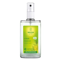 WELEDA Citrus Deodorant - 100ml - Deodorants